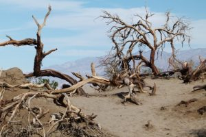 death-valley-89261_640